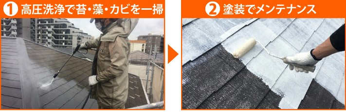 高圧洗浄で苔・藻・カビを一掃→塗装でメンテナンス