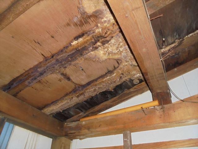 岡山市南区 雨漏り修理 倉庫 垂木腐っています。