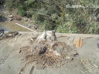 津山市で雨漏り修理 下葺き材の状態