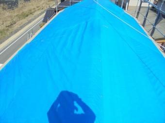 新見市 下葺き材の施工ブルーシート