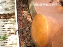 岡山市中区で軒樋も落ち葉がびっしり