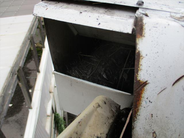 倉敷市で屋根工事 雨漏りの原因は雨どいの詰まりでした