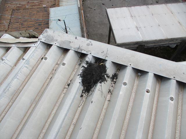 倉敷市で雨漏り点検・雨漏り修理 雨どいの詰まりが雨漏りの原因