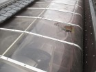 岡山市南区 カーポートの屋根修理 アクリル板割れ
