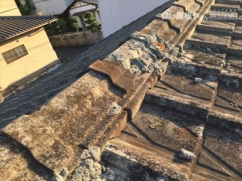 玉野市 屋根に苔が生えてる