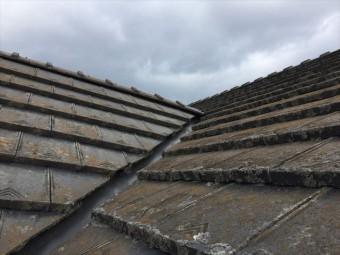 瀬戸内市 瓦屋根葺き替え工事 カバー工法 屋根点検  コケ繁殖