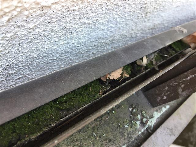 岡山市中区 カーポートの樋にゴミが