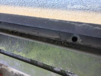 岡山市中区 カーポートの樋にゴミを取り除きます。