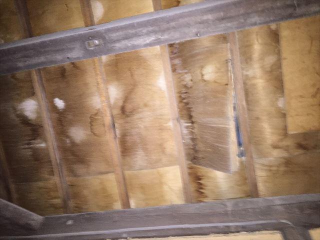 岡山市中区 屋根瓦修理 屋根診断士による点検 野地板剥がれ