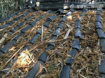 井原市 雨漏り修理 瓦ズレ