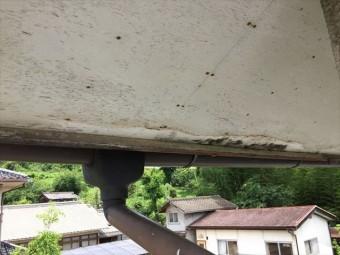 赤磐市で雨漏り修理 軒天が腐りかけています