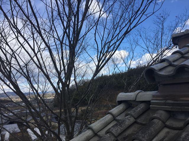 赤磐市 屋根瓦点検 瓦のズレ 木の枝が瓦に当たり
