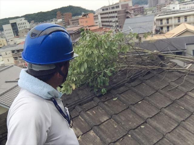 岡山市北区で台風による倒木で屋根が破損し保険で直されたお客様