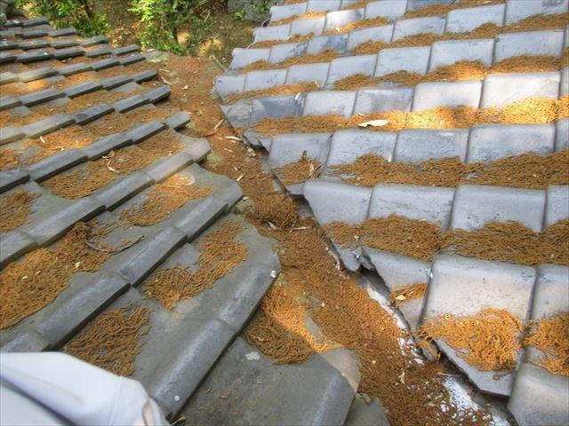 岡山県赤磐市 屋根工事 雨漏り修理 谷部点検 谷に落ち葉が
