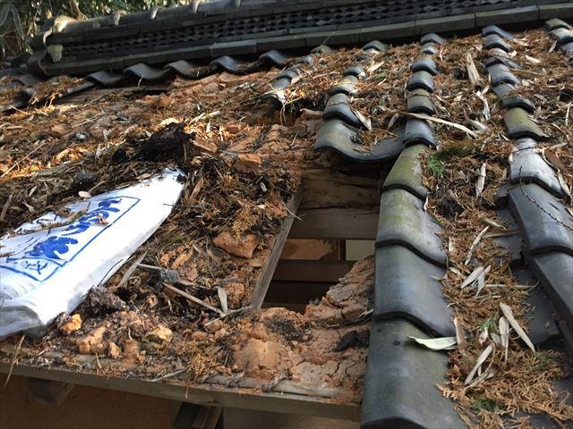 井原市で神社の屋根の雨漏り修理/垂木、野地板張り替え工事です