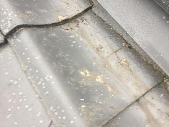 岡山市南区 雨漏り修理 瓦のヒビ