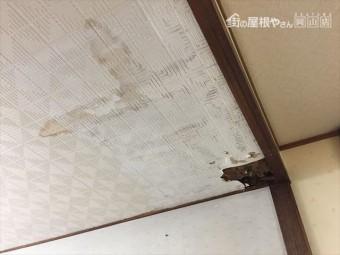 玉野市 雨漏り点検 天井に雨漏り後