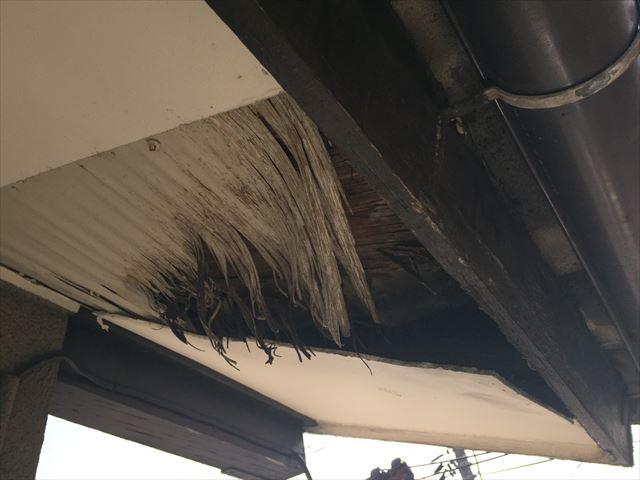 岡山市北区 雨漏り修理 軒天ケイカル版欠落