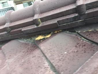 赤磐市 屋根瓦点検 屋根瓦葺き替え工事
