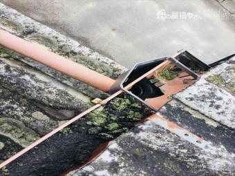 岡山市北区 雨樋にコケ
